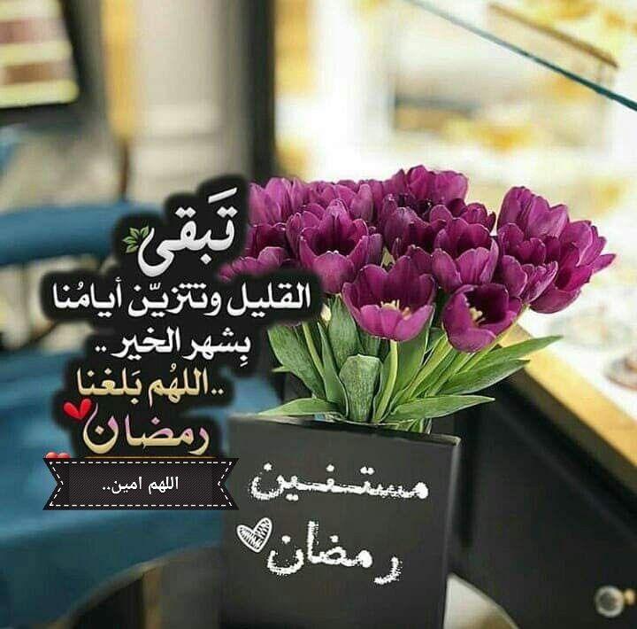 وبدأ القلب ير ف لنسائم رمضان اللهم بلغنا وأحبتنا صيامه وقيامه ونحن في أحسن حال و بأتم الصحه والعافيه ووفقنا فيه لل Ramadan Day Flowers Instagram Ramadan