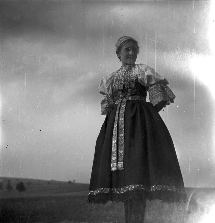 Dolný Lopašov - Sviatočný odev dievčat. Starší typ, nosil sa už aj pred I. svetovou vojnou. Živôtik brokátový, rukávce s vyšívanými rukávmi. Výšivka žltá, čipka bieložlto paličkovaná. Zástera vyšívaná, ostrapcované rozstrihaním látky.