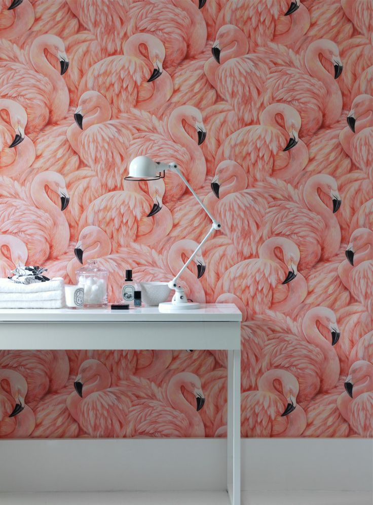 Flamingo by Wallpaperdirect.com (Follow amber_chloe on instagram)