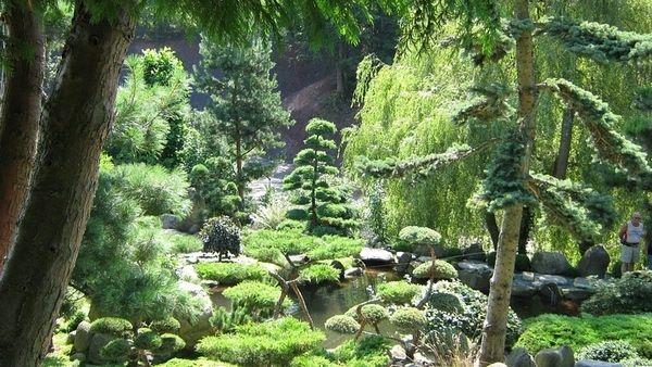 Japonská zahrada v polském Jarkowě stojí za návštěvu.