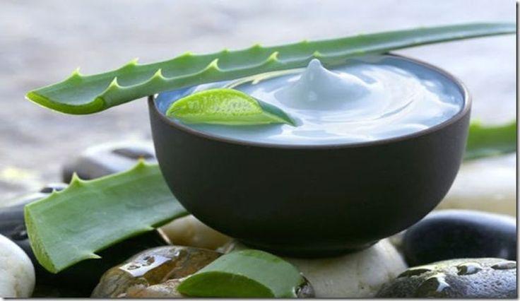 Todos sabemos que el aloe vera y aceite de coco poseen increíbles propiedades, pero no todos saben que mezclar estas dos sustancias puede ayudar mucho a nuestra piel. Por ejemplo, una de sus propiedades es que