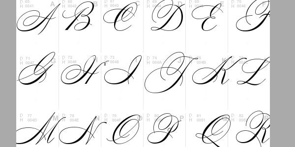 25 Top Calligraphy Fonts | calligraphy fonts | Pinterest | Tops ...