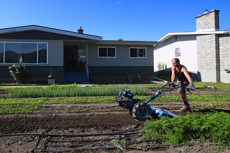 New Online Course: Profitable Urban Farming - Learning how to establish a profitable urban farm takes a LOT of planning and thinking - it's certainly not just about land access and good seedlings. Fortunately, the author of The Urban Farmer has launched this extremely excellent course.