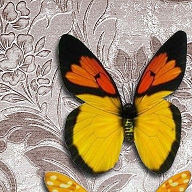 omlijst 3d kunst kunst aan de muur, dier 3d vlinders op gesatineerd papier 3d techniek met bruine ps kader - EUR € 58.17
