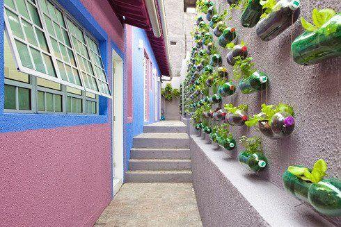 A Recycled Plastic Bottle Vertical Garden