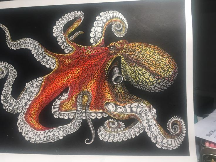 Octopus2 Page 35 By Elise SW