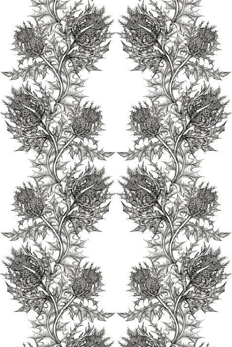 Thistle Fabric - lovely for drapery and light upholstery. #interiordesign #fabric #blackandwhite