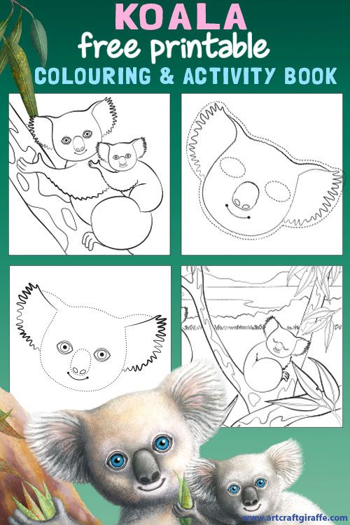 Koala Colouring and Activity Book Printable- Colour in, join the dots and make a Koala mask! Art & Craft inspired by the Hello Meerkat! Interactive Picturebook for 1-5 year olds.