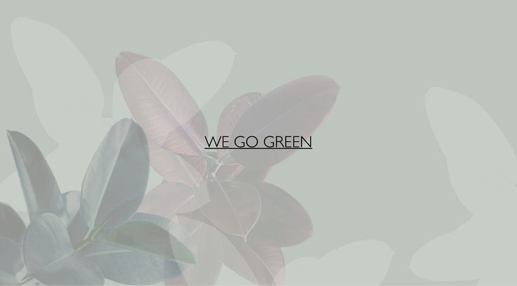 WE GO GREEN / Prof Office