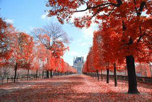 Paris in October | WhyGo Paris