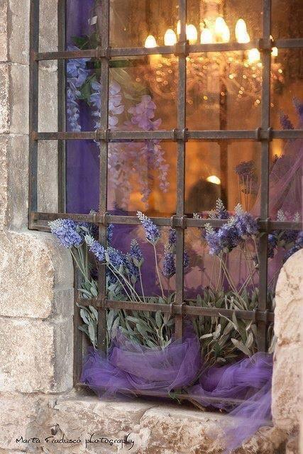 Mooi in de @Heather Provence-Nascimbene