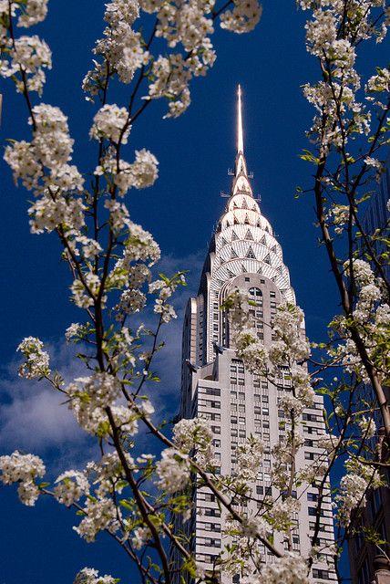 Chrysler Building in Cherry Blossoms, NYC - (CC) David Blaikie - www.flickr.com/photos/nikonvscanon/3453373352/