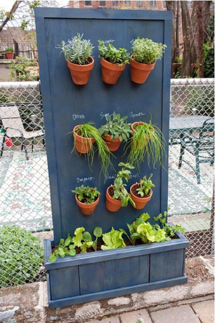 Vertical Gardening Ideas with Spicy Herbs in Your Kitchen   Design & DIY Magazine