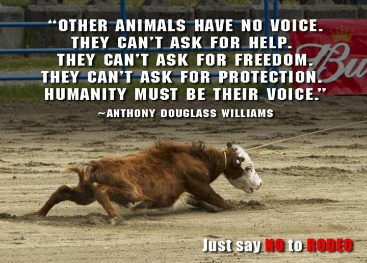 Image result for i respect animals more than humans