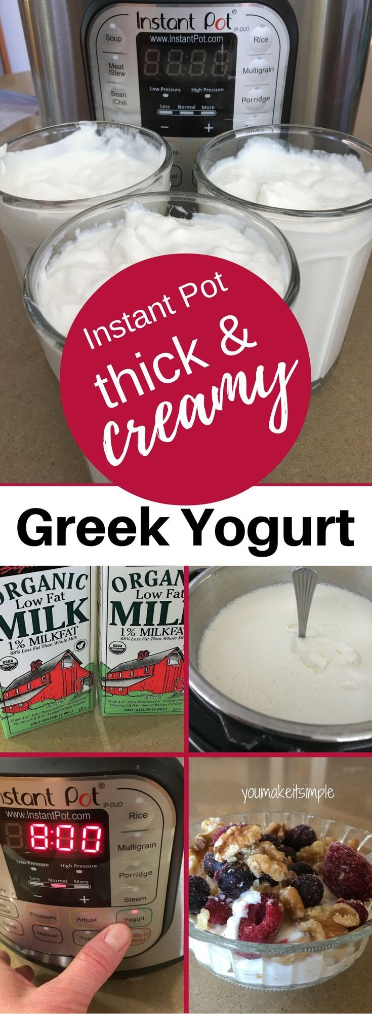 Instant Pot/Greek Yogurt/Easy & Yummy!