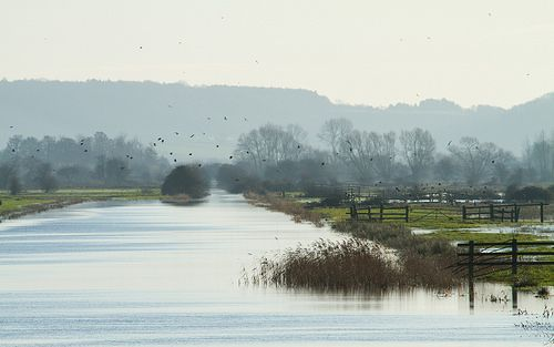 Somerset Floods - The King's Sedgemoor Drain