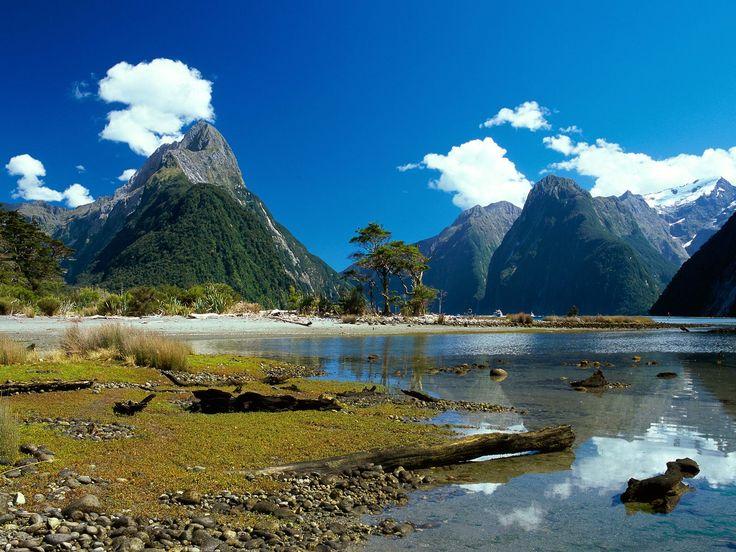 new zealand | Milford Sound in New Zealand | ciciliashinta - prehistoric looking