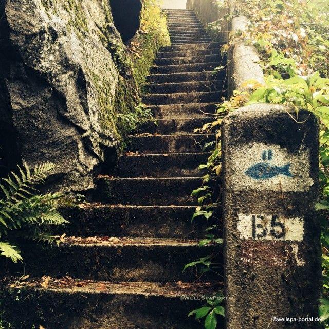 Birkenhof am Elfenhain im Bayrischer Wald. Spüren, erleben und innehalten. http://wellness-bummler.de/bayrischer-wald-hotel-check-sachen-wellness-im-birkenhof/