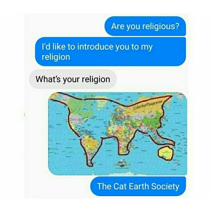 "Flat earthers conspiracy theory?  Try ""Cat earth society"""