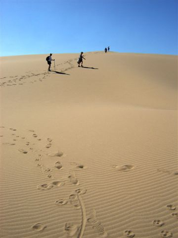 John Dellenback Dunes, Oregon....unbelieveable: Dellenback Dunes