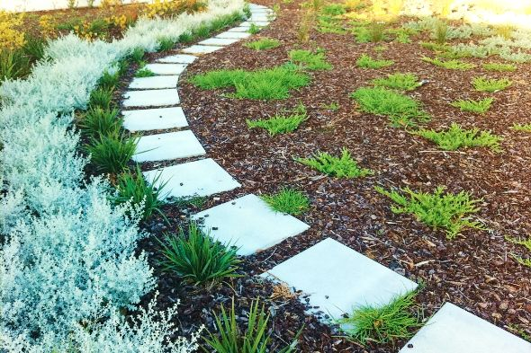"""Pin on VERGE GARDEN (or """" The-Strip-Between-Sidewalk-and ..."""