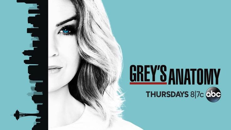 Grey's Anatomy Season 13 news: Producers Confirm Meredith & Alex's Relationship? - http://www.gackhollywood.com/2016/11/greys-anatomy-season-13-news-producers-confirm-meredith-alexs-relationship/