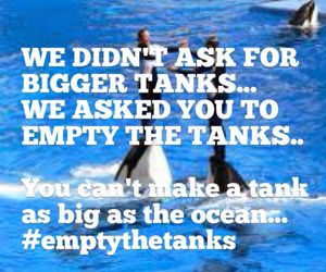 Orcas. Killer whales. Captivity kills. Boycott marine parks. Get the facts and protect our majestic oceans & sea life! #EmptyTheTanks #BoycottSeaWorld