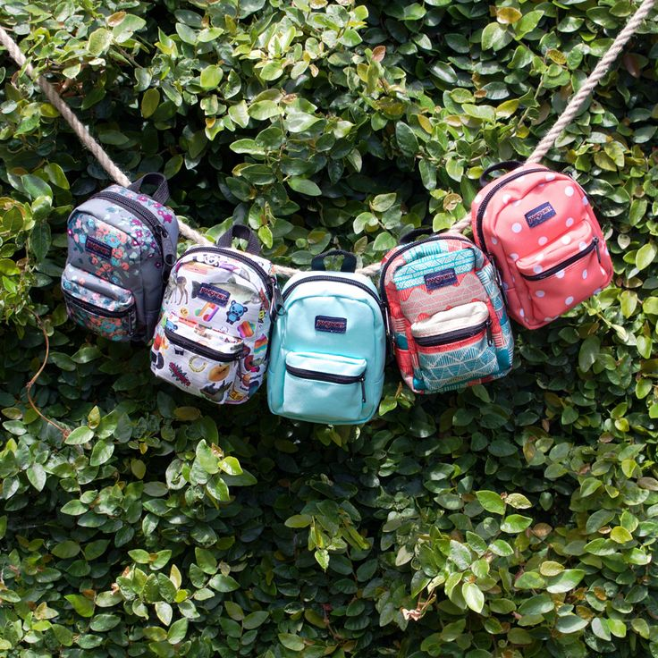 Big prints. Tiny pack. Shop JanSport accessories online and in store at Staples!