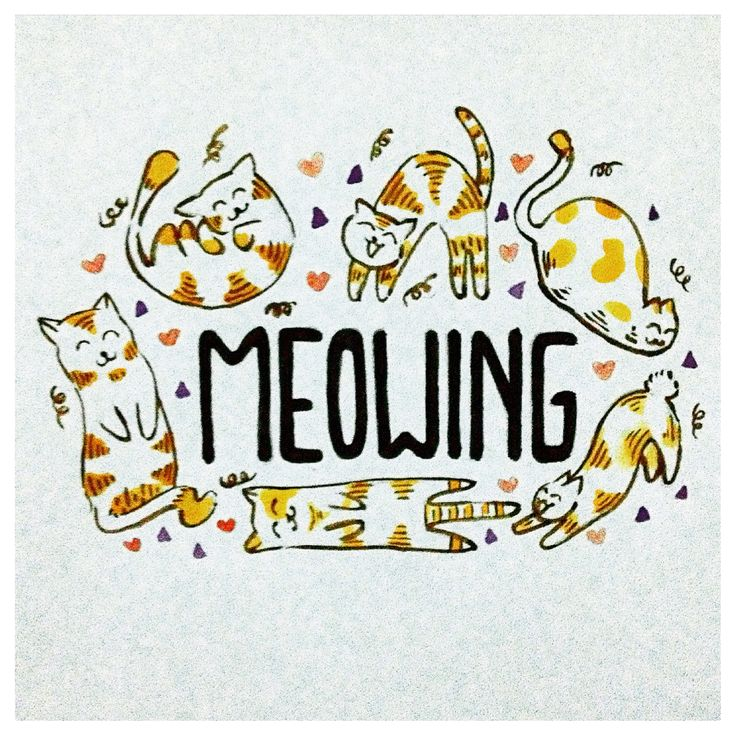 Meowing (meow miaw maow meong) :3 watercolor with little bit typo :)