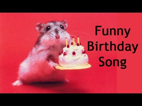 Funny Happy Birthday Song