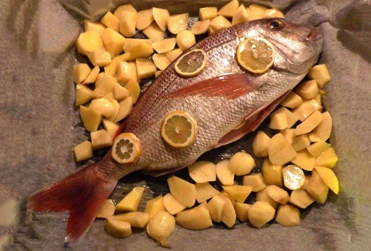 Dentice al forno con patate #ricettedisardegna #sardegna #sardinia #food #recipe #cucinasarda
