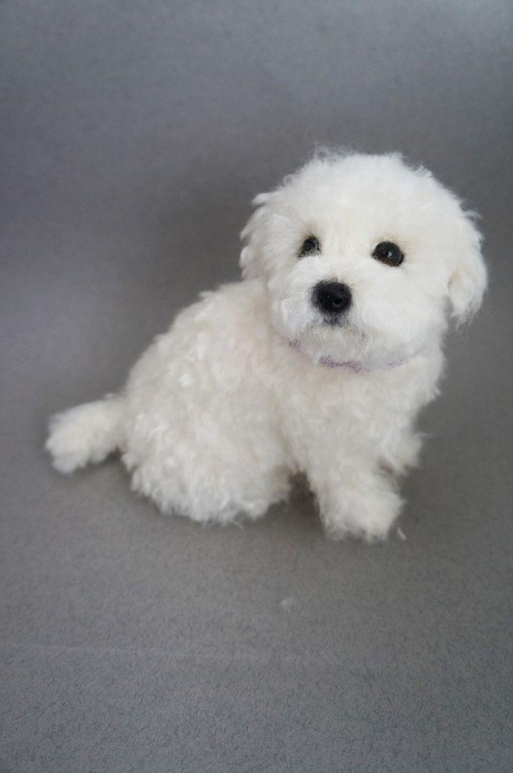 Life Size Needle Felted Puppy Maltese Dog, Wool Maltipoo Shorkie, Felt Animal, Custom Pet Dog Portrait Figurine, Miniature, Pet Memorial by #JanetsNeedleFelting on Etsy #puppy