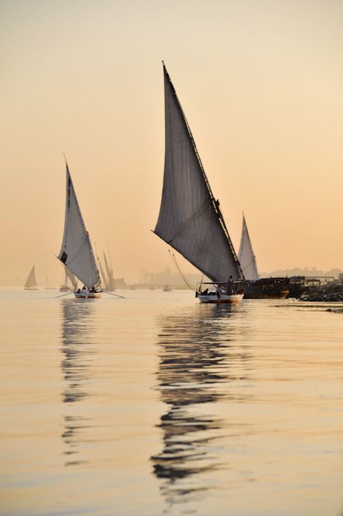 "dontcallmebetty:    (via 500px / Photo ""Feluccas on the Nile River"" by Adam Goldberg)"
