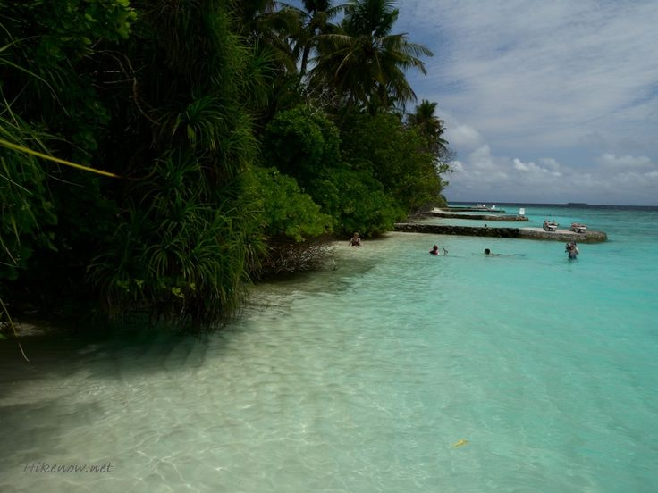287 Best Images About Travel Maldives Islands Vacation