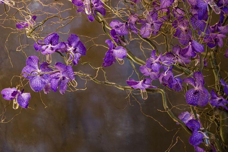 Mariage-Suedois-L'art des orchidees