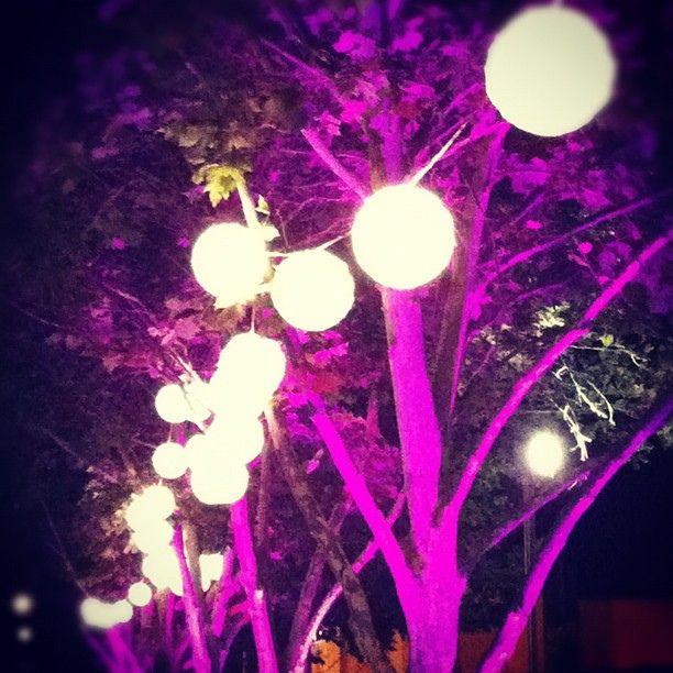 https://flic.kr/p/aWi1HB | Lanterns - Perth