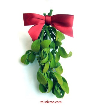 This Year I Am Going To Get Real Mistletoe For My Entryway I Am