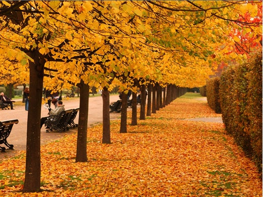 Boston #autumn is like no other