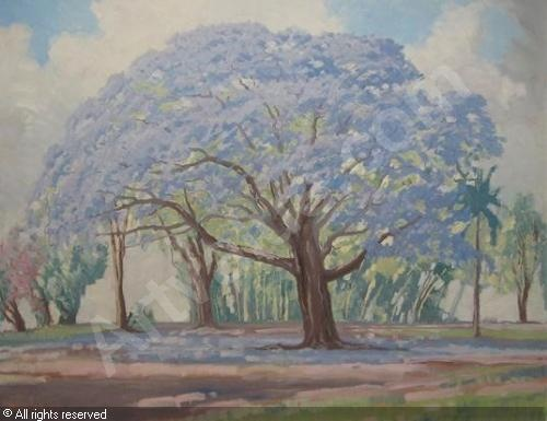 Jacob Hendrik Pierneef   Jacaranda tree in Swaziland