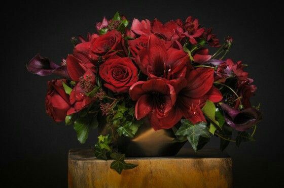 http://nymag.com/guides/valentines/2016/flowers/ Photo: Courtesy of Barbara's Flowers)  Barbara's Flowers 2522 Frederick Douglass Blvd., nr. 134th St.; 212-234-3211 A departure from a traditional design with long-stemmed roses, the Cosmos en Rouge features deep-red amaryllis, roses, cosmos, ivy, viburnum, and miniature calla lilies tightly bundled in a matte-finished bronze ceramic vase for $225.