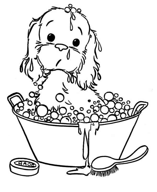Puppy, : puppy-taking-a-bath-coloring-page. Kaaf