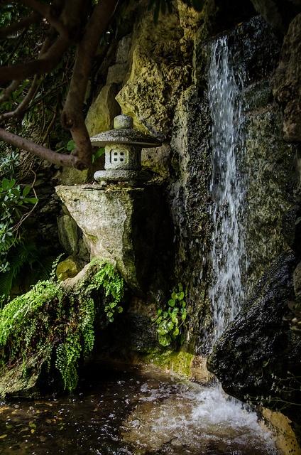 17 Best Images About Zilker Botanical Gardens On Pinterest