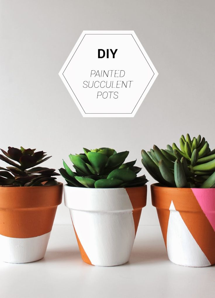 DIY painted succulent pots ~ so cute for your patio garden or a nice centrepiece for your table ~ best with succulent plants