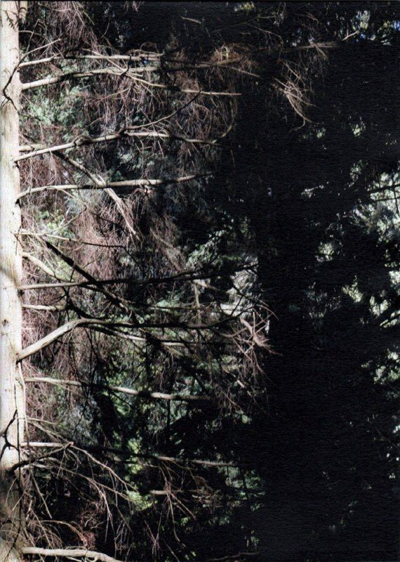Northwestern Wild Photozine / Photographs from Canada / 14 cm x 19,5 cm / 24 pages / 16 photographs Published on May 2014  by Paula Prats Edition of 100