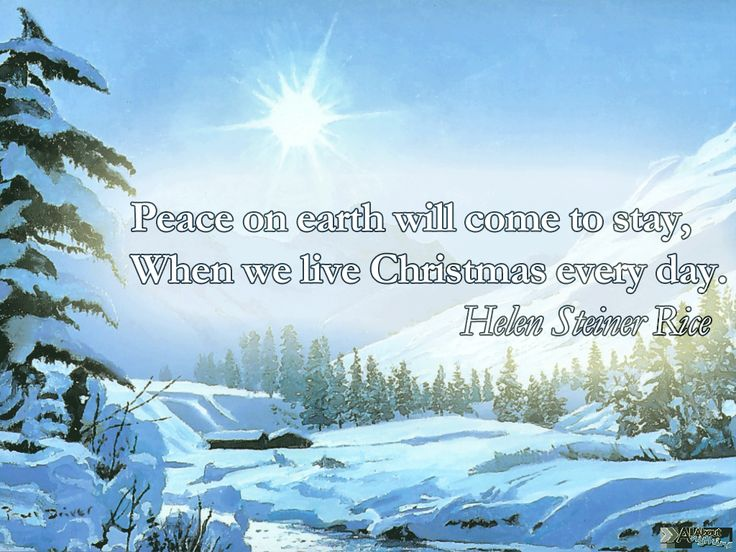 Holiday Peace Quotes | you might also like christmas quotes funny christmas jokes