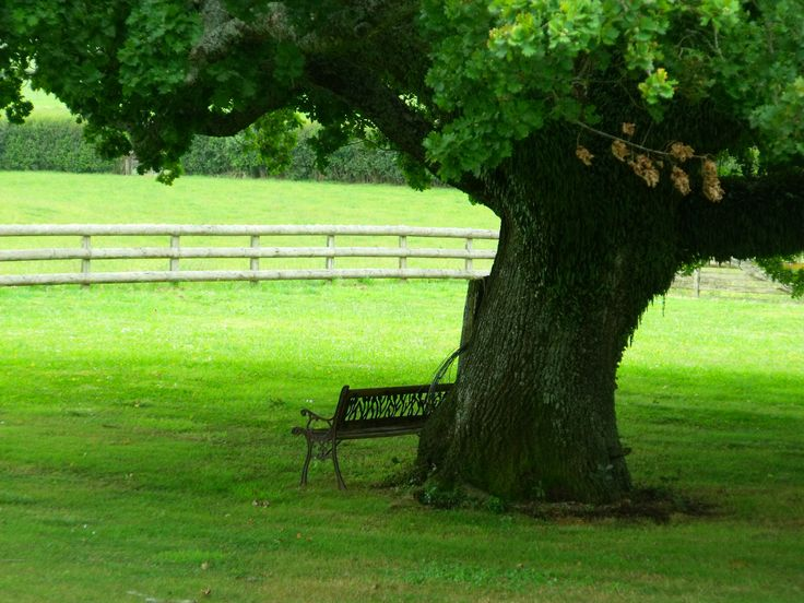 A place to rest :)