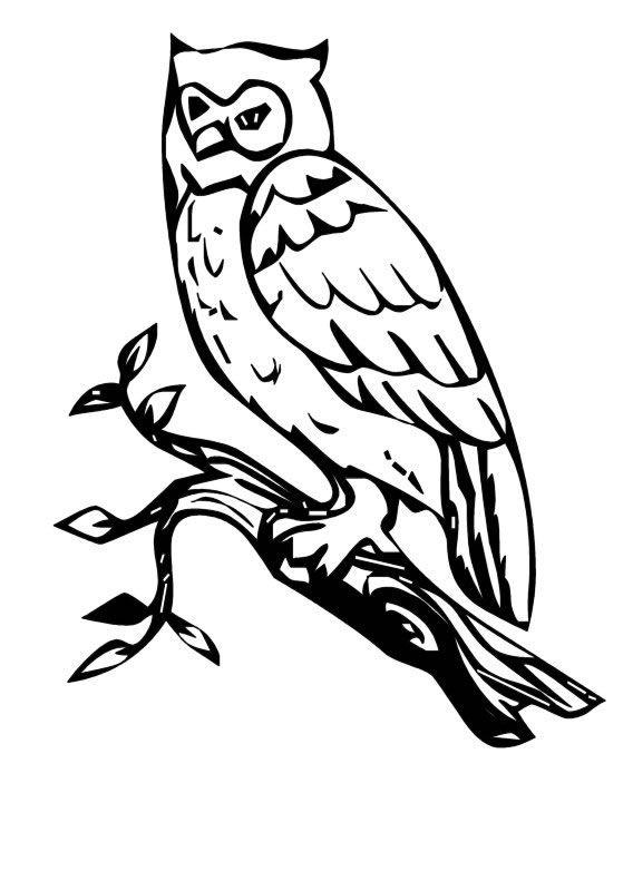 pin en animales dibujos para dibujar