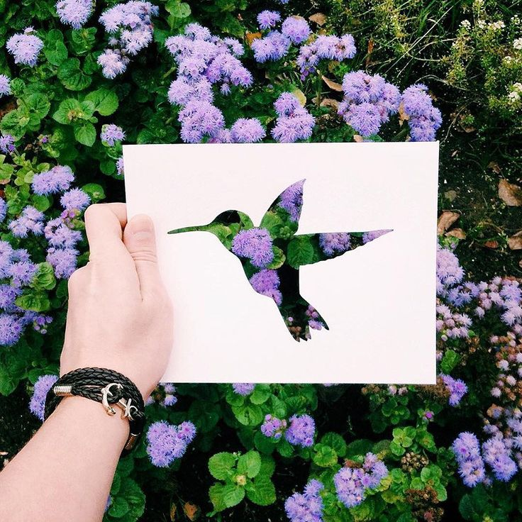 Artist Uses Nature To Color In Cutout Silhouettes of Animals