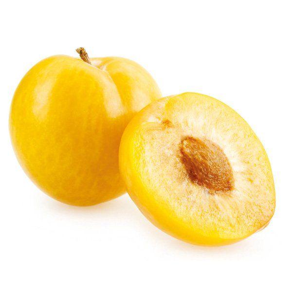 Śliwa - Prunus domestica 'Renkloda Ulena'