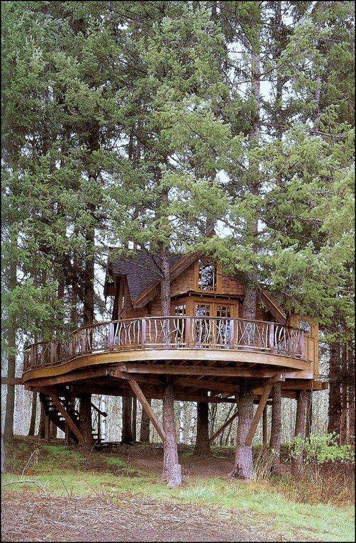 Casas originales en los bosques                                                                                                                                                                                 Más